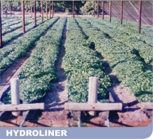 Hydroliner 2